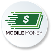 Mobile Money Platform Page Icon